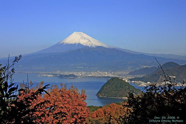 沼津市から見る富士